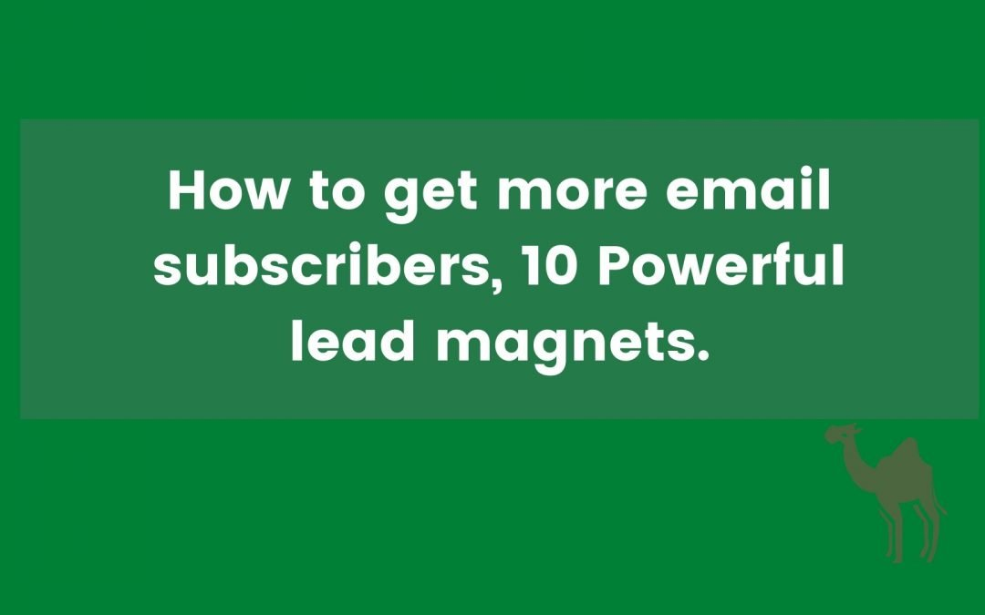 How to get more email subscribers, 10 Powerful lead magnets.