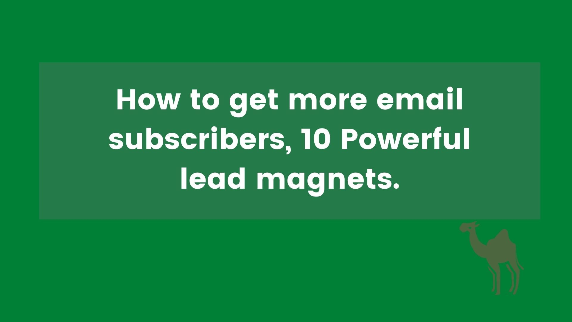 10 Powerful lead magnets.